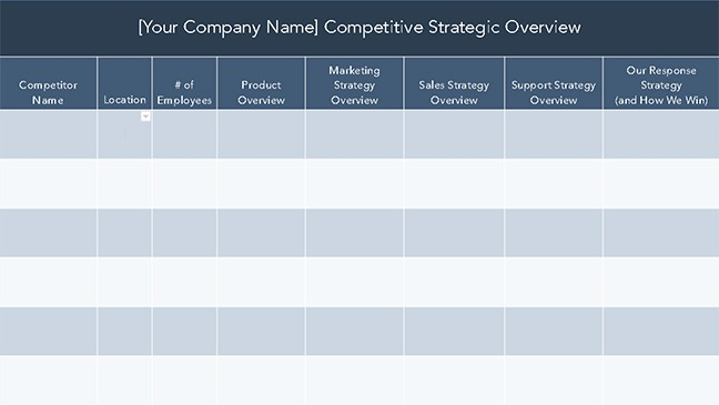 Competitive Strategic Overview